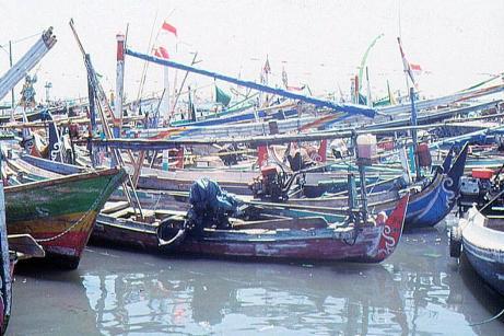 Kapal-kapal Ikan