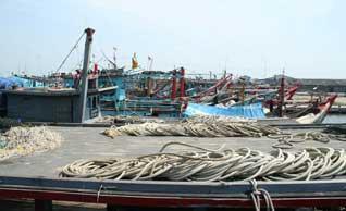 Kapal ikan di Belawan, Sumatra Utara tanpa dokumen kapal