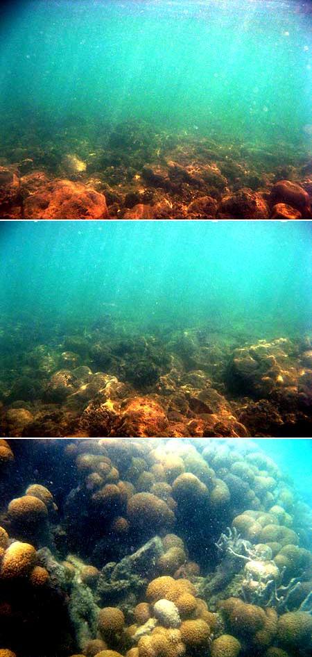Terumbu karang Pantai Penyusuk yang rusak, Bangka (2008)